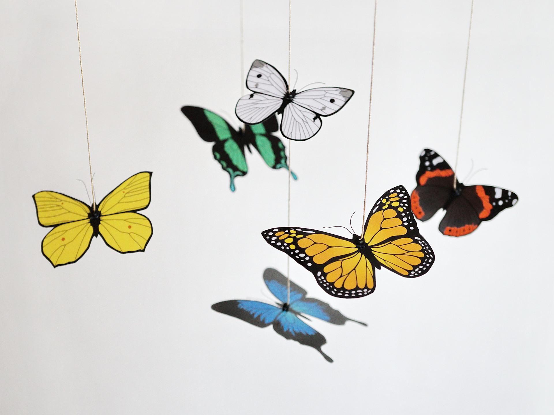 Karuzela Motyle